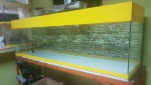Braced Tank Prepping Up by Gary Custodio Philippines