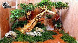 Hardscape Diorama Style Moulding Using Plywood by Edrian Corpuz Espiritu Philippines