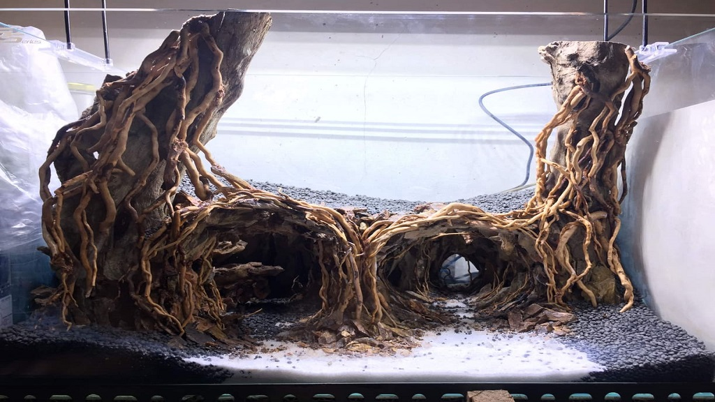 Hardscape Diorama Style by Chuck Llorca Cajilig Philippines