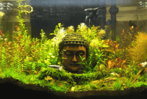 Taiwanese Style Buddha Figurine Aquascaped by Doi Suason Philippines