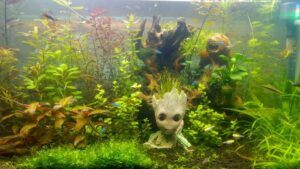 Taiwanese Style Groot and Lion Figurines Aquascaped by Ronnie Faisst Philippines Resized