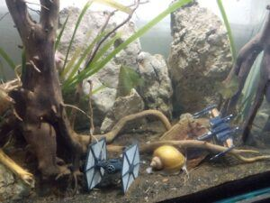 Taiwanese Style Star Wars Toys Aquascaped by Stoffer Samudio Philippines