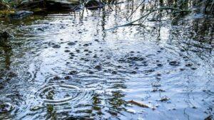 Gas Bubbles Carbon Dioxide Laacher Lake Germany