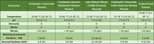 Ideal Water Parameters in Freshwater Aquariums