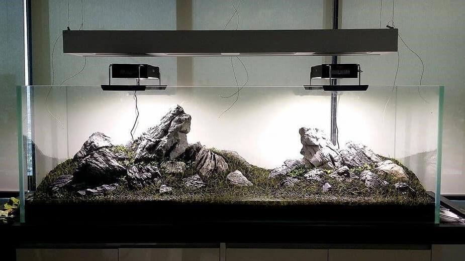 Iwagumi Style Setup Aquascaped by Reimond Po Philippines