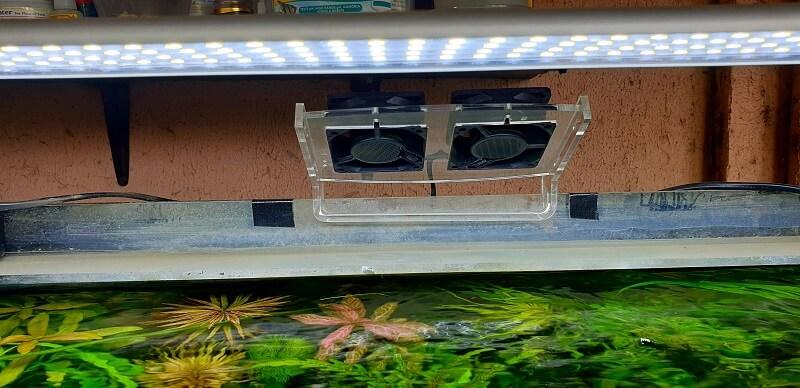 My Aquarium Fan for Evaporative Cooling