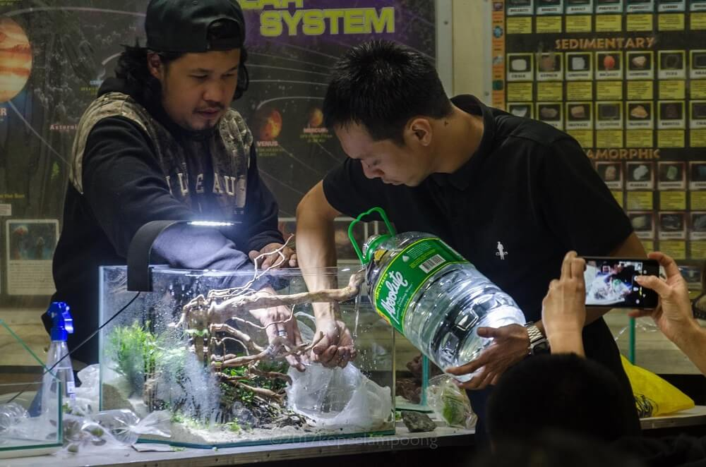 Showing One of the Many Ways How to Properly Fill the Tank After Aquascaping by Dah Real Philippines