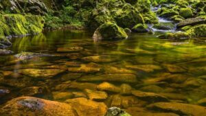 Soil and Rocks Roles of Purifying Water in Nature