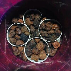 Wet Lava Rocks in a DIY Canister Filter During Cleaning by Dhon Sison Philippines