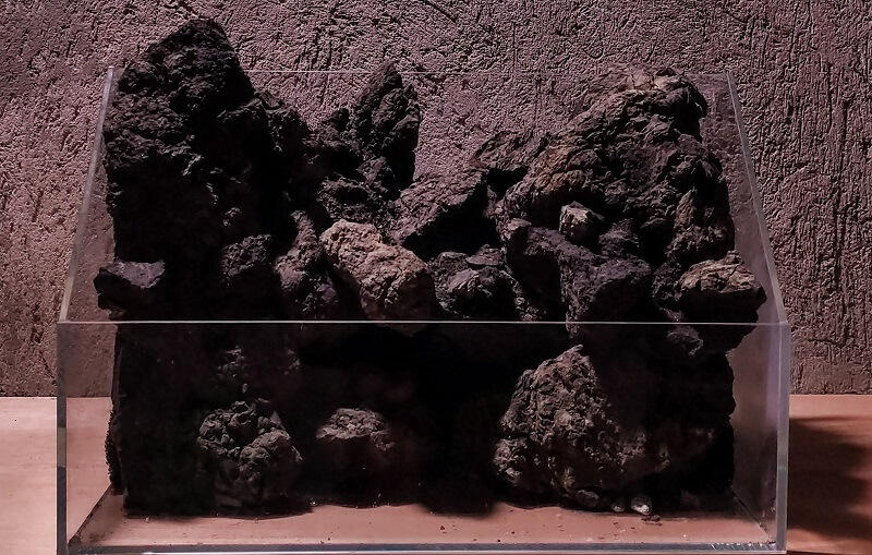 Piling up Black Lava Rocks to Raise the Hardscape in a Paludarium by Matthew Manes Philippines