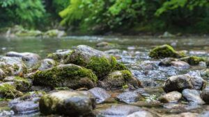 Mountain River flowing on rocks acting as filters