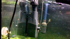 My Standalone Surface Skimmer