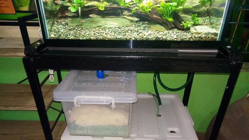 DIY Sump Using Alternative Materials - Storage Boxes