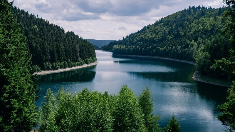 River Surrounded with Forest - Thuringia Germany