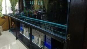 Sump Filter Customized Designed by Chrisrock Orongan Philippines